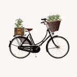 Indy Urban Acres Mobile Garden Advertising